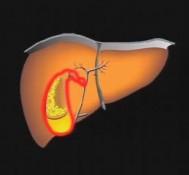 Woreczek żółciowy – gdy boli brzuch